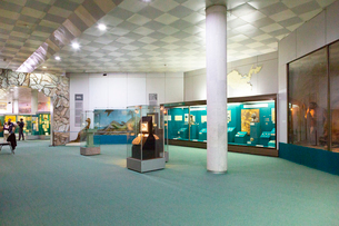 ウズベキスタン国立歴史博物館の展示風景の写真素材 [FYI03455377]