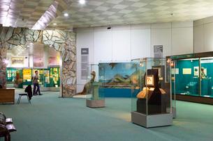 ウズベキスタン国立歴史博物館の展示風景の写真素材 [FYI03455378]