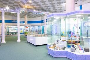 ウズベキスタン国立歴史博物館の展示風景の写真素材 [FYI03455385]
