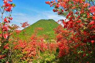 榛名富士と つつじ (榛名山)の写真素材 [FYI03455422]