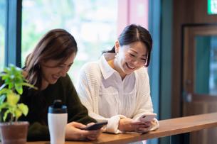カフェで打ち合わせをする女性2人の写真素材 [FYI03455546]