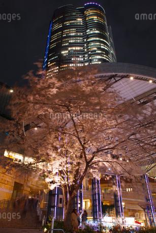 六本木ヒルズと桜の写真素材 [FYI03456627]