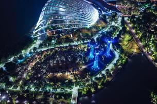 マリーナ・ベイ・サンズ展望台からの夜景(シンガポール)の写真素材 [FYI03456669]