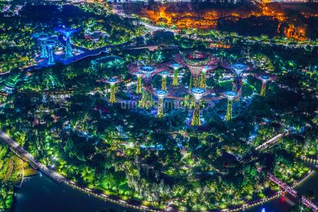 マリーナ・ベイ・サンズ展望台からの夜景(シンガポール)の写真素材 [FYI03456688]