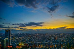 東京都庁の展望台から見える新宿の都市風景と夕景の写真素材 [FYI03456823]
