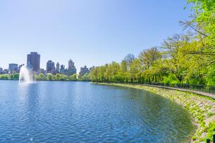 セントラルパーク 貯水池沿いに成長する新緑の木々とセントラルパークイーストの高級住宅街の写真素材 [FYI03456880]