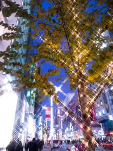 東京都 銀座のイルミネーションの写真素材 [FYI03456922]