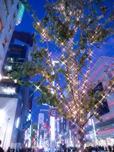 東京都 銀座のイルミネーションの写真素材 [FYI03456924]