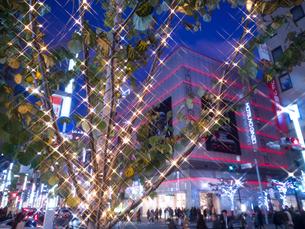 東京都 銀座のイルミネーションの写真素材 [FYI03456929]