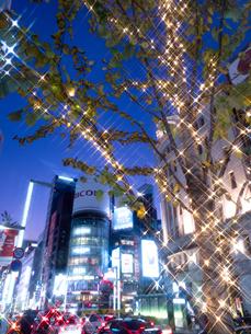 東京都 銀座のイルミネーションの写真素材 [FYI03456931]