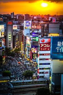渋谷ヒカリエから見える渋谷スクランブル交差点の写真素材 [FYI03457122]