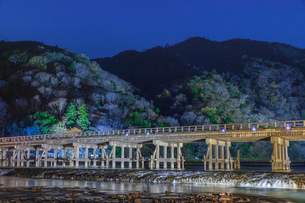 京都嵐山花灯路の写真素材 [FYI03457354]