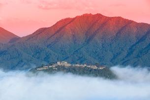 立雲狭から望む竹田城の雲海の写真素材 [FYI03457363]