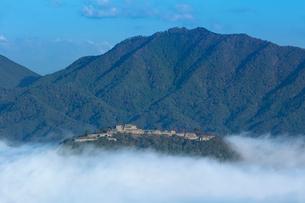 立雲狭から望む竹田城の雲海の写真素材 [FYI03457364]