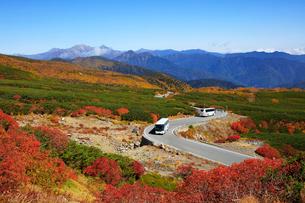 紅葉の乗鞍エコーラインと穂高岳を望むの写真素材 [FYI03457543]