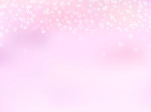 桜背景素材のイラスト素材 [FYI03457577]