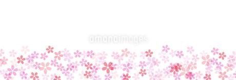 桜の背景素材 ワイドのイラスト素材 [FYI03457579]