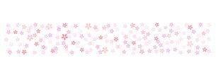 桜の背景素材 ワイドのイラスト素材 [FYI03457580]