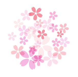 桜模様素材のイラスト素材 [FYI03457581]