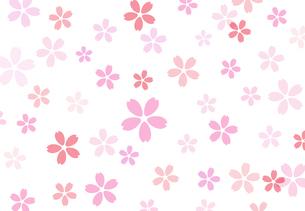 桜背景素材のイラスト素材 [FYI03457582]