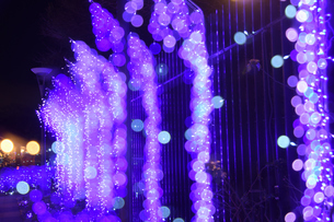 江の島ライトアップの写真素材 [FYI03457756]