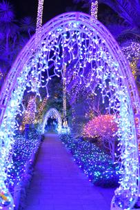 江の島ライトアップの写真素材 [FYI03457760]