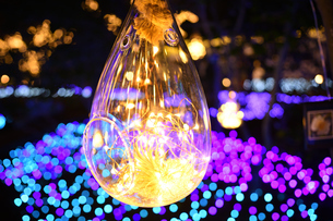 江の島ライトアップの写真素材 [FYI03457765]