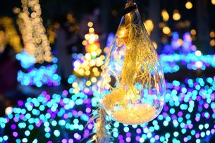 江の島ライトアップの写真素材 [FYI03457779]