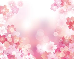 桜 春 背景 イラストのイラスト素材 [FYI03458018]