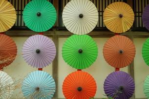 和傘の写真素材 [FYI03458128]