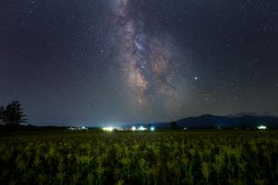 天の川と畑の写真素材 [FYI03458299]