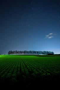 夜の畑の写真素材 [FYI03458302]