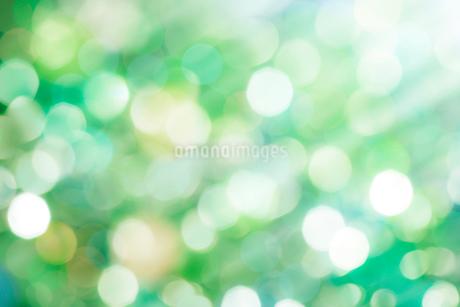 緑のボケた背景の写真素材 [FYI03458382]