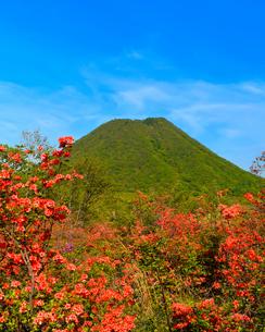 榛名富士と つつじ (榛名山)の写真素材 [FYI03458462]