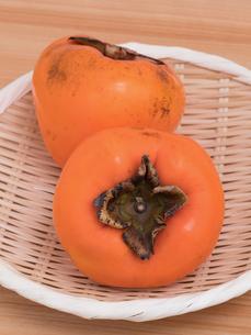 富士柿の写真素材 [FYI03458567]