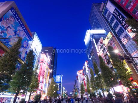 夕暮れの秋葉原電気街の写真素材 [FYI03458586]