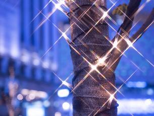 東京都 銀座のイルミネーションの写真素材 [FYI03458638]