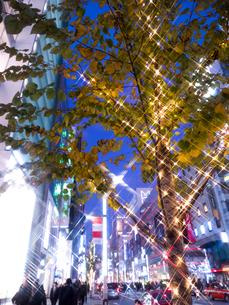 東京都 銀座のイルミネーションの写真素材 [FYI03458644]