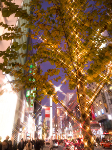 東京都 銀座のイルミネーションの写真素材 [FYI03458645]