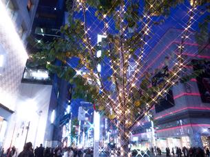 東京都 銀座のイルミネーションの写真素材 [FYI03458650]