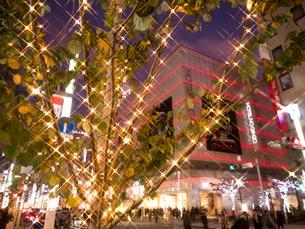 東京都 銀座のイルミネーションの写真素材 [FYI03458652]