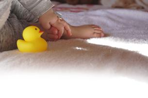 赤ちゃんの日向ぼっこの写真素材 [FYI03458715]