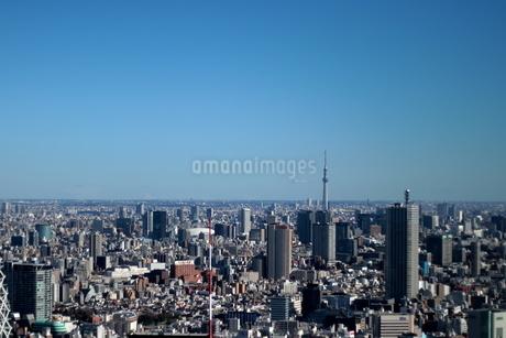 新宿 東京の街並み 晴天にスカイツリーの写真素材 [FYI03458756]