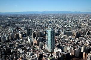 新宿 東京の街並みの写真素材 [FYI03458757]