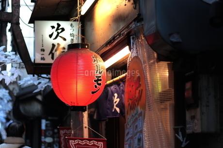 新宿 思い出横丁 ホルモン居酒屋の提灯の写真素材 [FYI03458772]