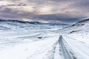雪山と長く続く道の写真素材 [FYI03458807]