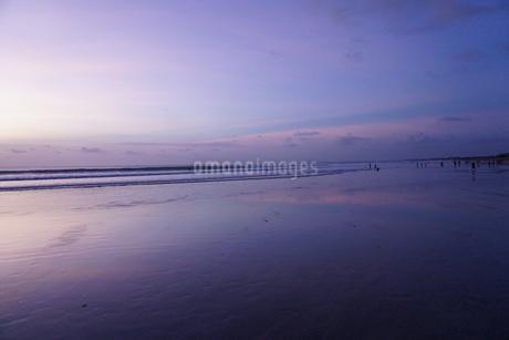 日没の海岸の写真素材 [FYI03459012]