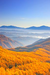 御岳高原から望む経ヶ岳などの山並みと朝の紅葉のカラマツ林の写真素材 [FYI03459292]
