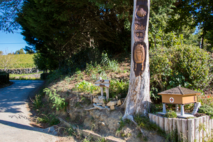 サンティアゴ巡礼路の印:帆立貝の写真素材 [FYI03459566]
