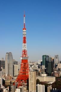 東京タワーと港区の高層ビル群の写真素材 [FYI03459687]